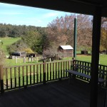 Spacious back deck for relaxing and taking in views of valley & wildlife.